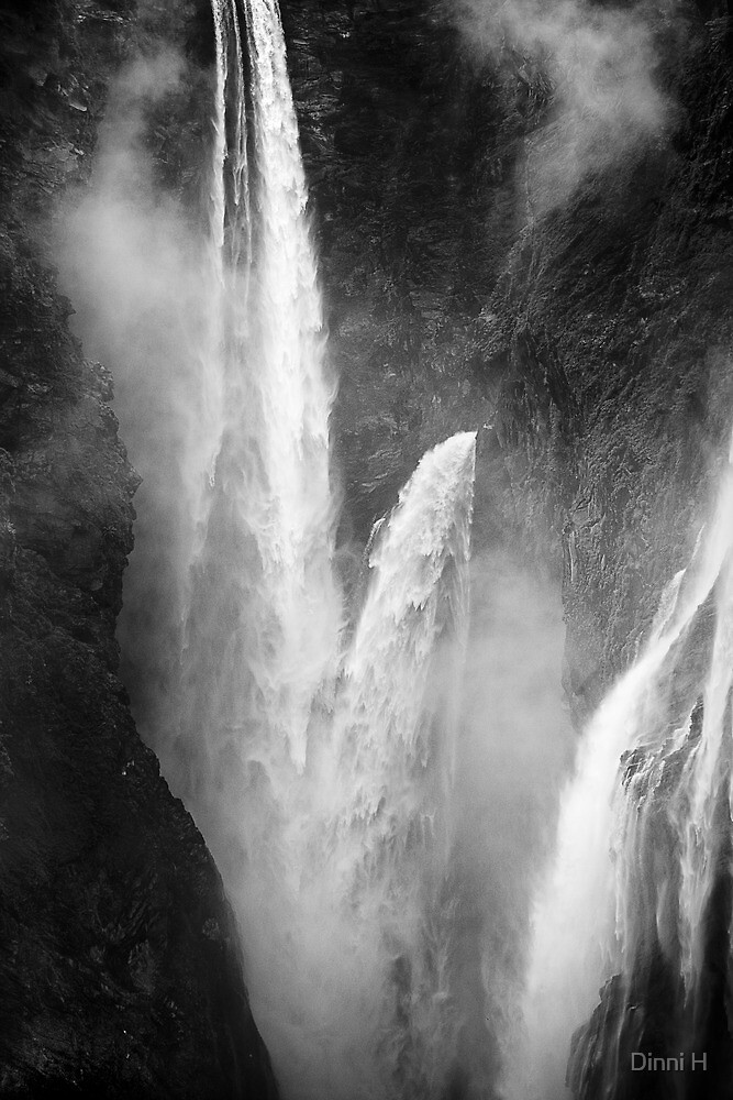 Jog falls in black and white by Dinni H