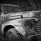 Old Ford Truck by Mike Hendren