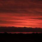 Sunset - Berri, South Australia by Dwayne Madden