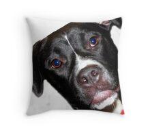 A Sweet Pit Bull Throw Pillow