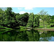 Pond at Boar's Head   ^ Photographic Print