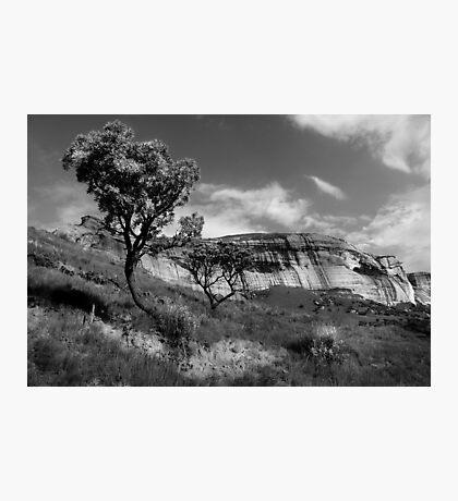 Sandstone Cliffs, Golden Gate, South Africa Photographic Print