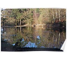Keston ponds reflections Poster