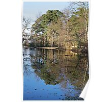 Keston ponds winter reflections Poster