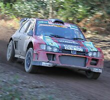 Andy Burton/Robin Kellard - Peugeot Cosworth - Wyedean Forest Rally 2011 Winners by MSport-Images