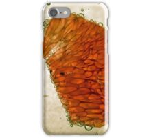 Grapefruit in Bubbles iPhone Case/Skin