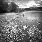 Hutt River  by Christine  Wilson