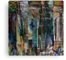 the third layer Canvas Print