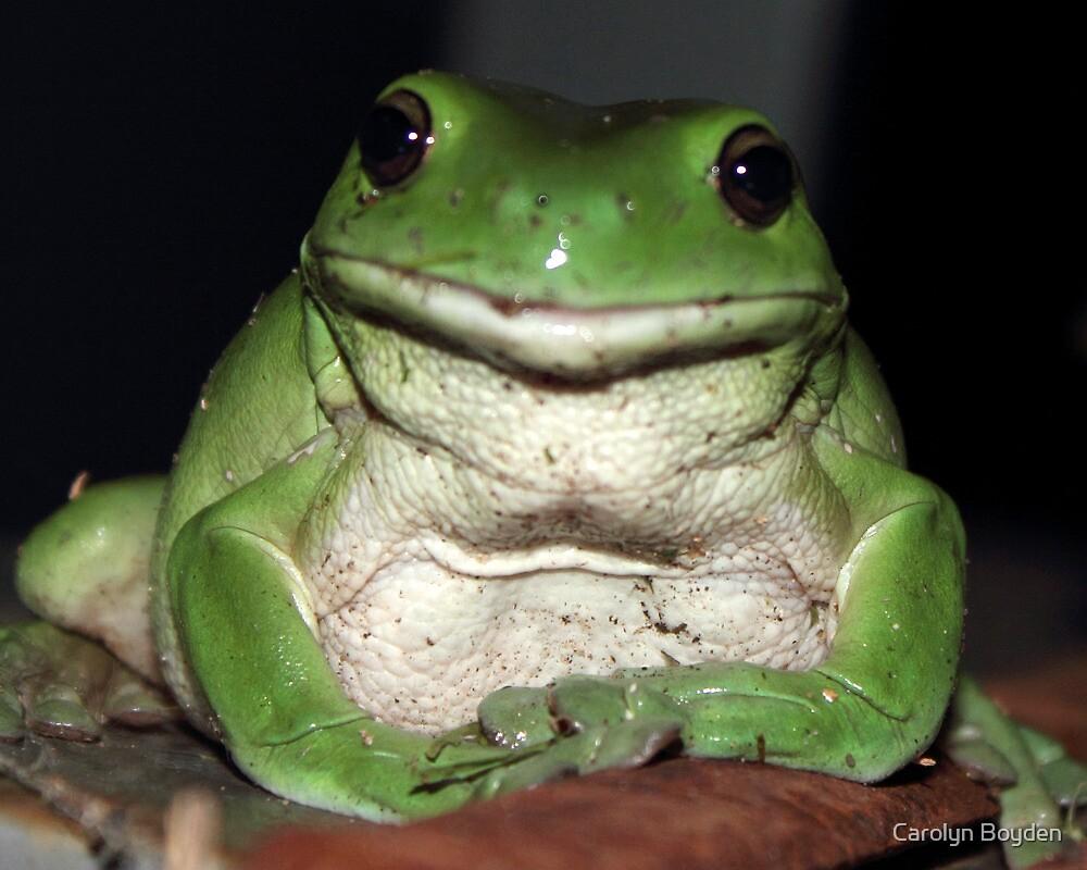 Kermit's Cousin by Carolyn Boyden