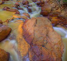Mountain Stream (Ouray, Colorado) by Brendon Perkins