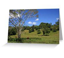 Tallebudgera Valley, SE Queensland. Greeting Card