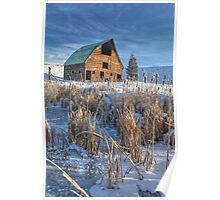 Old Barn Amidst the Cattails (Steamboat Springs, Colorado) Poster