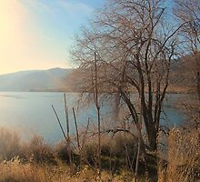 Lake Entiat  by sunflowerlove