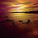 SEA OF DREAMS by leonie7