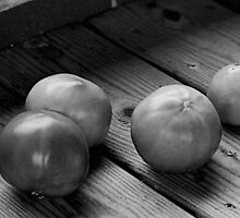 Bobby's only Tomatoes by John Toxey