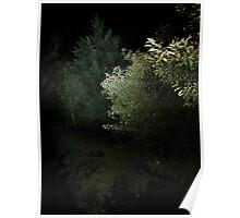 Mystery Beach Garden At Night - Long Beach Island NJ Poster