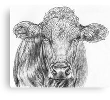 Cow Sketch Canvas Print