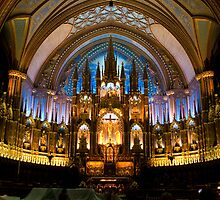 Notre-Dame Basilica (Montreal) by Stuart  Hardy
