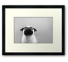 Pug Black and White Framed Print