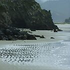Lonely Beach north of Dunedin by orkology