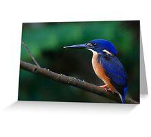 Azure Kingfisher Greeting Card