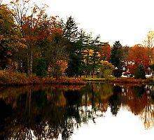 """Reflections of Autumn by Christine """"Xine"""" Segalas"""