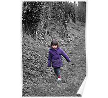Spring walks Poster