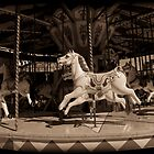 Old Carousel by StefanFierros