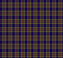 00432 Anthony Plaid Blue Tartan  by Detnecs2013