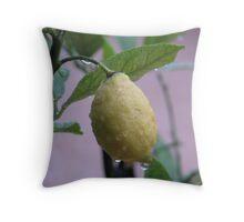 Lemon juice! Throw Pillow