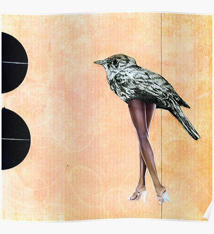 legs-legs-legs Poster