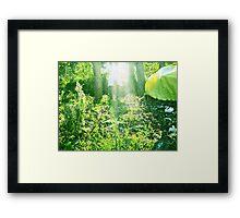 Lightheaded Framed Print