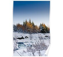 Beautiful winter day Poster
