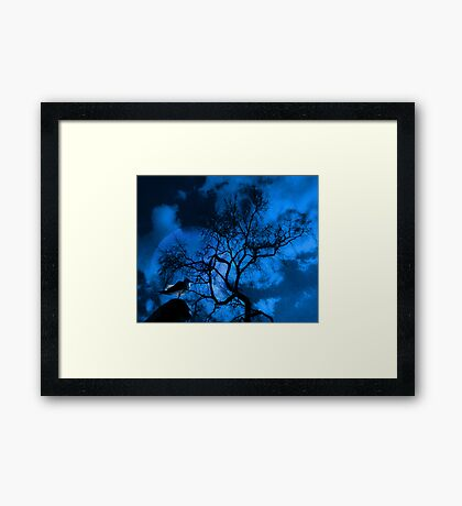 Moonbird Framed Print