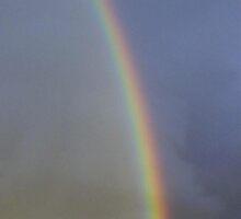 rainbow by reddogcards