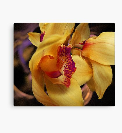 Orchid View Canvas Print