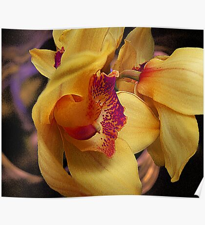 Orchid View Poster