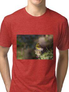 Singing to the Gods Tri-blend T-Shirt