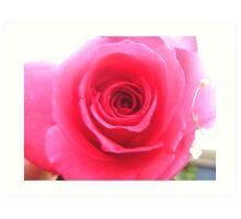 V day rose Art Print
