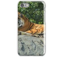 Amur Tiger on a Rock iPhone Case/Skin