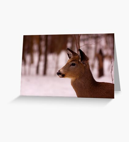 Listening for on coming kids Greeting Card