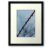 I like it when you touch my thorns Framed Print