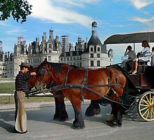 Carriage Rides At Chambord Castle by Lanis Rossi