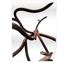 Abstract Roots Sculpture Photograph Poster