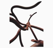 Abstract Roots Sculpture Photograph by ztrnorge