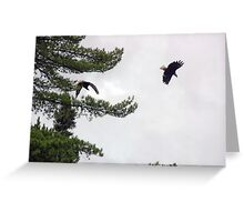 Double Eagle Greeting Card