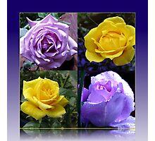 Exquisite Roses Collage Photographic Print