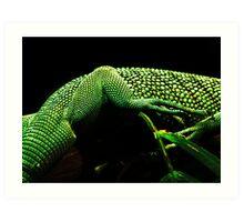 Lizard Skin Art Print