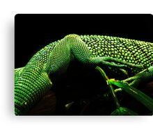 Lizard Skin Canvas Print