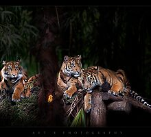 brothers and sisters by ArtX
